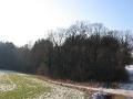 geocaching-wasserfall-25012009-14-43-30.jpg