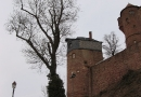 Geocaching Wertheim 15.02.2009 16-31-06.JPG