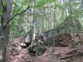 geocaching-3-diebe-02082009-11-51-29.jpg