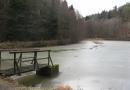 entlang-des-langenbaches-26-02-12-14-38-18