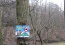 entlang-des-langenbaches-26-02-12-16-03-11