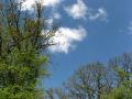geocaching-im-hain-19042009-13-04-34.jpg