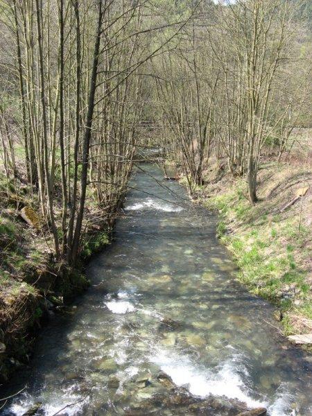 geocaching-multi-lostplace-tour-kolditz-13042009-12-24-19.jpg