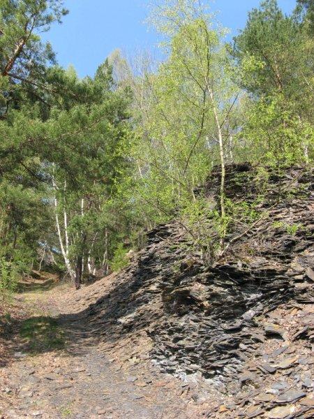 geocaching-multi-lostplace-tour-kolditz-13042009-12-53-26.jpg