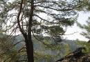 geocaching-multi-lostplace-tour-kolditz-13042009-12-56-02.jpg