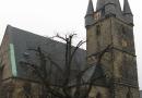 geocaching-korbstadtrundgang-01012009-13-30-35.jpg