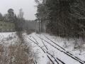 geocaching-muna-breitenguessbach-03012010-15-12-00.jpg