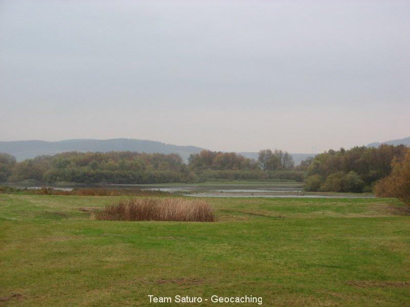 geocaching-die-wildgaense-kommen-06112008-16-17-32.jpg