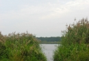 2012-paddeltour-spree-05-09-12-08-09-31