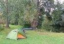2012-paddeltour-spree-05-09-12-17-14-42