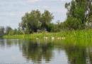 2012-paddeltour-spree-03-09-12-12-43-11