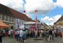 2012-paddeltour-spree-01-09-12-12-48-09