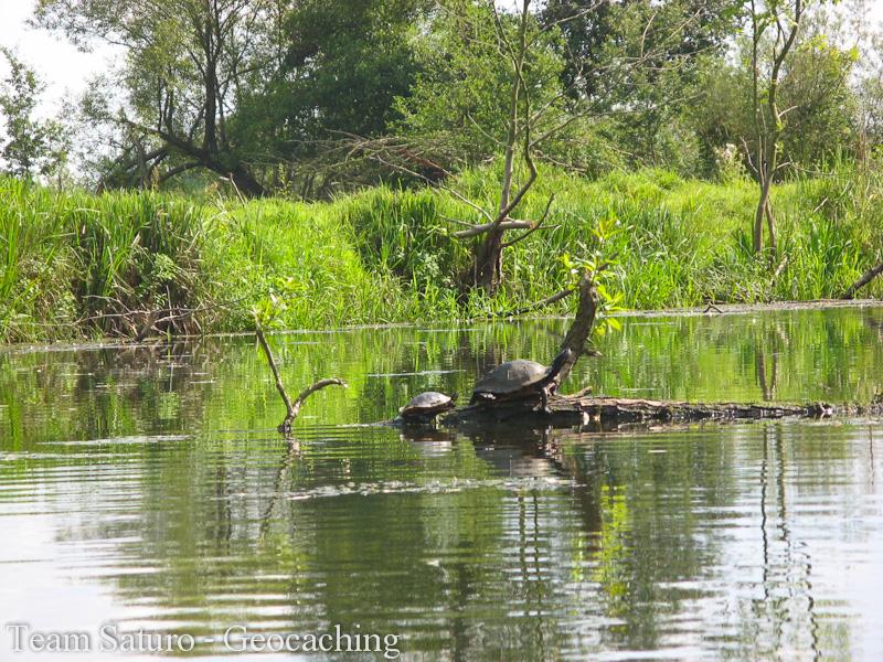 2012-paddeltour-spree-04-09-12-13-37-57