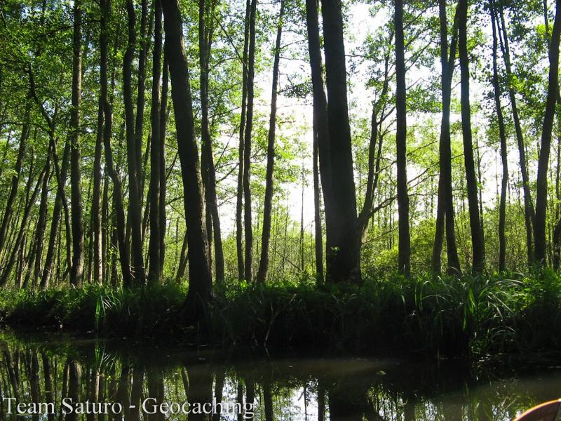 2012-paddeltour-spree-02-09-12-13-35-59