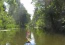 2012-paddeltour-spree-02-09-12-13-44-54