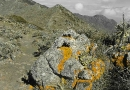 teneriffa-2010-22-10-2010-10-46-20