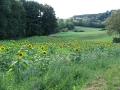 radtour-rattelsdorf-staffelstein-30082009-15-14-54.jpg