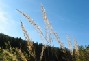 roadbook-ebrach-16-10-11-13-25-04