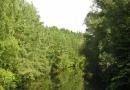 rund-um-den-brombachsee-12092010-14-22-22.jpg
