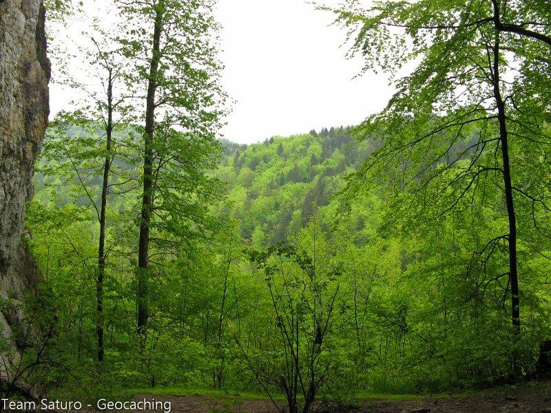 sonntagsspaziergang-13-05-2010-15-54-45