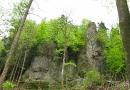 sonntagsspaziergang-13-05-2010-15-10-49