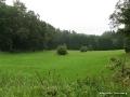 steigerwald-18-ein-ganz-normaler-wandercache-15082010-13-21-05.jpg