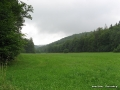 steigerwald-18-ein-ganz-normaler-wandercache-15082010-14-34-33.jpg