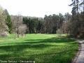 steigerwald-19-alle-macht-den-multis-100411-13-30-55.jpg