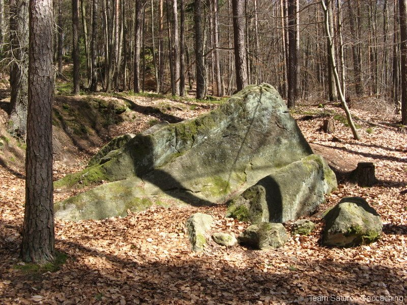 steinert-18042010-12-35-32.jpg