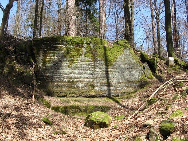 steinert-18042010-13-19-12.jpg