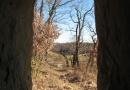 urwiese-und-huthaeuschen-25-03-12-17-02-53