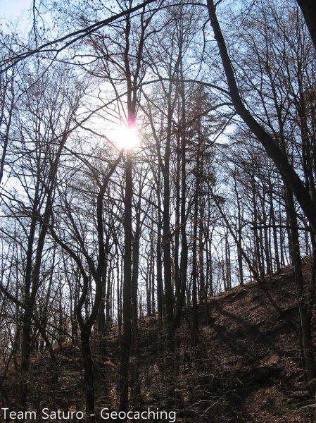urwiese-und-huthaeuschen-25-03-12-16-14-56