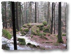 geocaching-die-stoeppacher-querkel-01032009-14-32-29