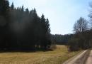 der-lockruf-des-waldes-25-03-12-14-01-04