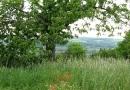 die-verschollene-burg-03062010-15-32-23.jpg