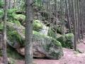 geocaching-3-diebe-02082009-11-54-06.jpg