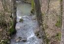 entlang-des-langenbaches-26-02-12-14-21-41