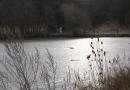 entlang-des-langenbaches-26-02-12-16-19-00