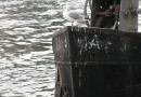geocaching-hochwassermarken-14022010-14-27-27.jpg