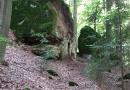 geocaching-expedition-hohler-stein-06092009-14-08-14.jpg