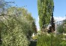 geocaching-im-hain-19042009-15-39-44.jpg