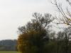 geocaching-itzgrund-3-willkommen-in-sachsen-02112008-13-54-10.jpg
