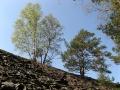 geocaching-multi-lostplace-tour-kolditz-13042009-13-04-08.jpg