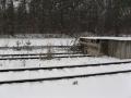 geocaching-muna-breitenguessbach-03012010-15-00-03.jpg