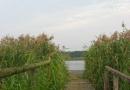 2012-paddeltour-spree-05-09-12-08-04-35