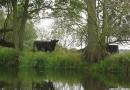 2012-paddeltour-spree-05-09-12-11-14-40