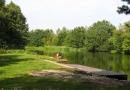 2012-paddeltour-spree-03-09-12-16-03-38