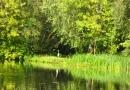 2012-paddeltour-spree-03-09-12-16-37-19