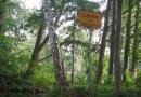 2012-paddeltour-spree-01-09-12-15-54-35