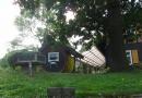 2012-paddeltour-spree-01-09-12-16-00-07